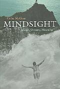 Mindsight Image, Dream, Meaning