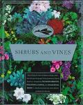 Shrubs and Vines (American Garden Guides) - American Garden Guides