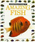 Eyewitness Juniors Amazing Fish - Mary Ling - Paperback