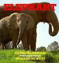 Elephant - Caroline Arnold - Hardcover