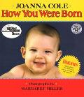 How You Were Born - Joanna Cole - Hardcover - REV