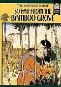 So Far from Bamboo Grove