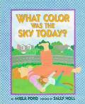 What Color Was the Sky Today? - Miela Ford - Hardcover - 1 ED