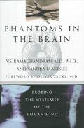 Phantoms in Brain