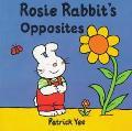 Rosie Rabbits Concept Board Books Opposites