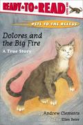 Dolores and the Big Fire A True Story
