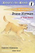 Brave Norman A True Story