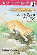 Ringo Saves the Day! A True Story