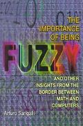 Importance of Being Fuzzy And Other Insights from the Border Between Math and Computers