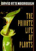 Private Life of Plants