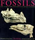 Fossils The Evolution and Extinction of Species