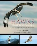 Hawks from Every Angle: How to Identify Raptors In Flight - Jerry Liguori - Hardcover