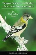 Tanagers, Cardinals, and Finches of the United States and Canada The Photographic Guide