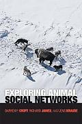 Exploring Animal Social Networks