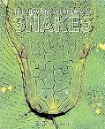 New Encyclopedia of Snakes