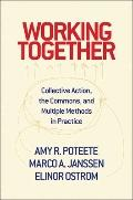 Working Together: Collective Action, the Commons, and Multiple Methods in Practice