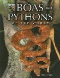 Boas and Pythons of the World