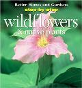 Step-by-Step Wildflowers and Native Plants