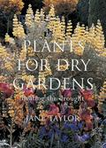 Plants for Dry Gardens Beating the Drought