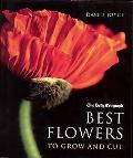Best Flowers To Grow And Cut