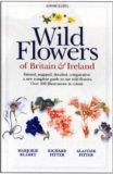The Wild Flowers of Britain and Ireland: A New Guide to Our Wild Flowers (Tandem)
