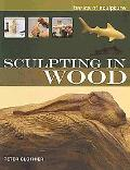 Sculpting in Wood (Basics of Sculpture)