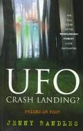 UFO Crash Landing?: Friend or Foe?