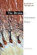Brain A Neuroscience Primer