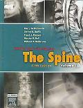 Rothman-Simeone the Spine