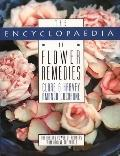 Encyclopaedia of Flower Remedies: The Healing Power of Flowers from around the World - Clare...