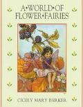World of Flower Fairies