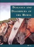 Color Atlas of Diseases and Disorders of the Horse - Derek C. Knottenbelt - Hardcover