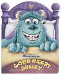 Good Night, Sulley!