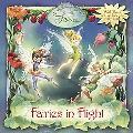 Fairies in Flight