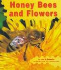 Honey Bees and Flowers