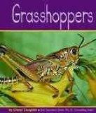 Grasshoppers (Insects)