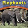 Elephants Trunks and Tusks