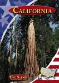 Rand McNally California State Map