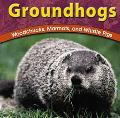 Groundhogs Woodchucks, Marmots, and Whistle Pigs
