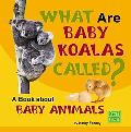 What Are Baby Koalas Called? A Book About Baby Animals