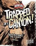 Trapped in a Canyon Aron Ralston's Story of Survival