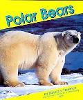 Polar Bears, Vol. 4