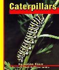Caterpillars, Vol. 3