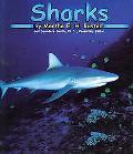 Sharks, Vol. 2