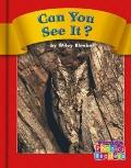 Can You See It? (Phonics Readers)