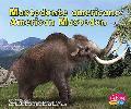 Mastodonte Americano/American Mastodon