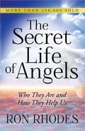 Secret Life of Angels : Who They Are and How They Help Us