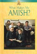 What Makes Me Amish ?