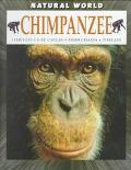 Chimpanzee Habitats, Life Cycles, Food Chains, Threats