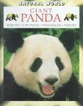 Giant Panda Habitats, Life Cycles, Food Chains, Threats